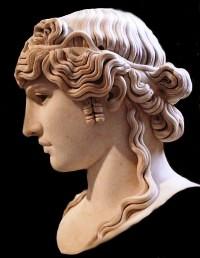 Antinous Mandragone / Fotografia de arte romano